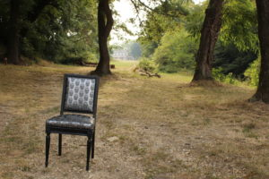 fabien-godrie-chaise-louis-xvi-palmer